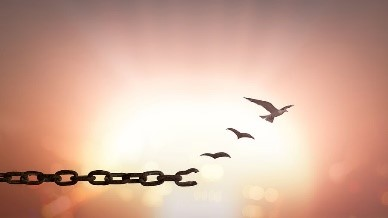 Image result for broken chains